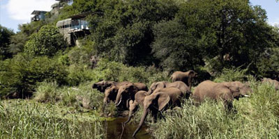 25_south_africa_singita_lebombo_lodge
